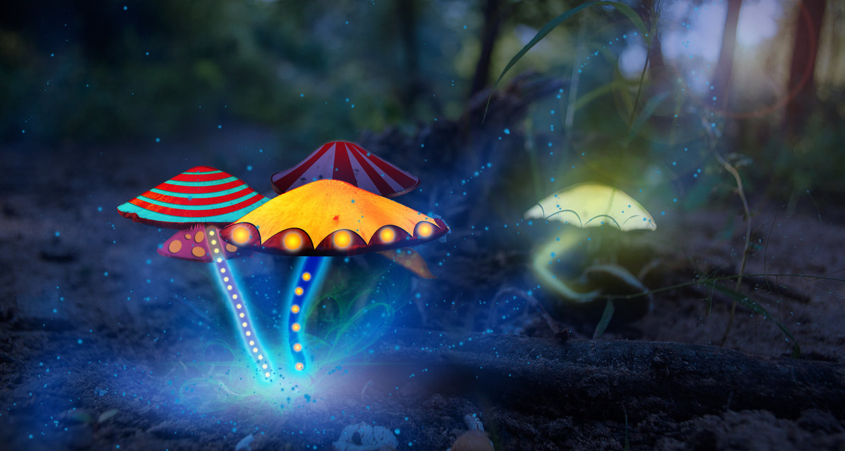 magic_mushrooms_by_7ucky-d6re974