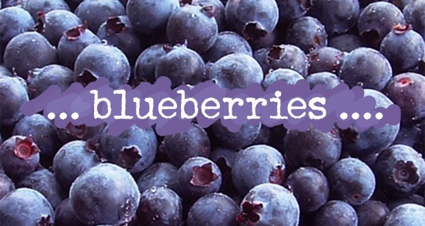 Blueberries one of most nutritious fruits